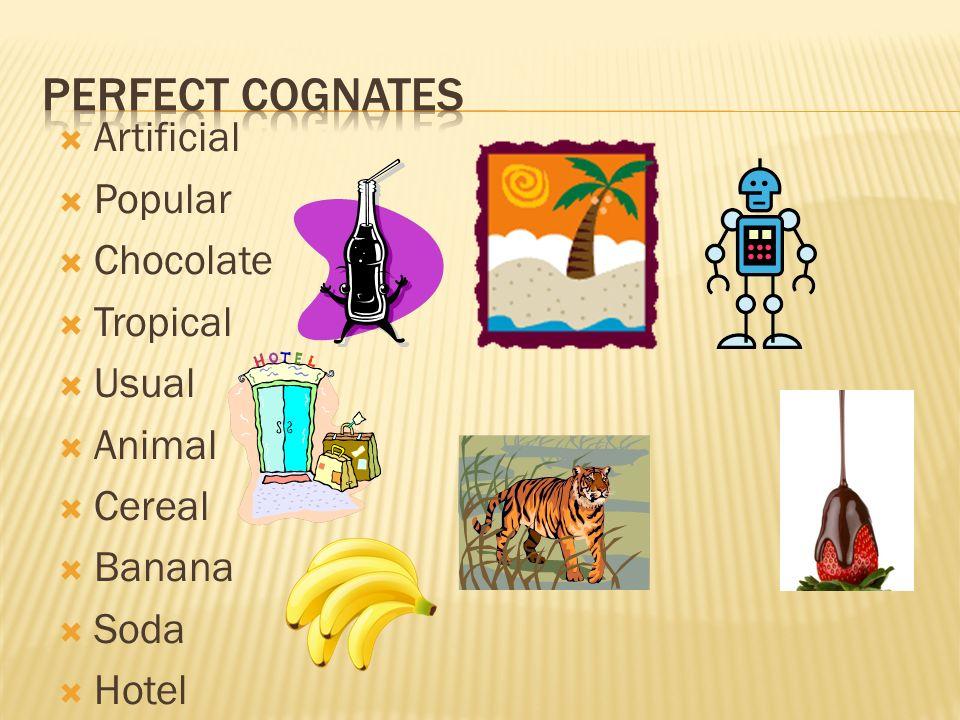 Artificial Popular Chocolate Tropical Usual Animal Cereal Banana Soda Hotel