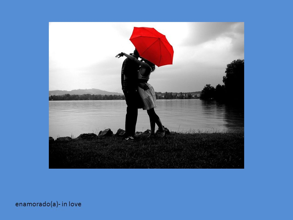enamorado(a)- in love