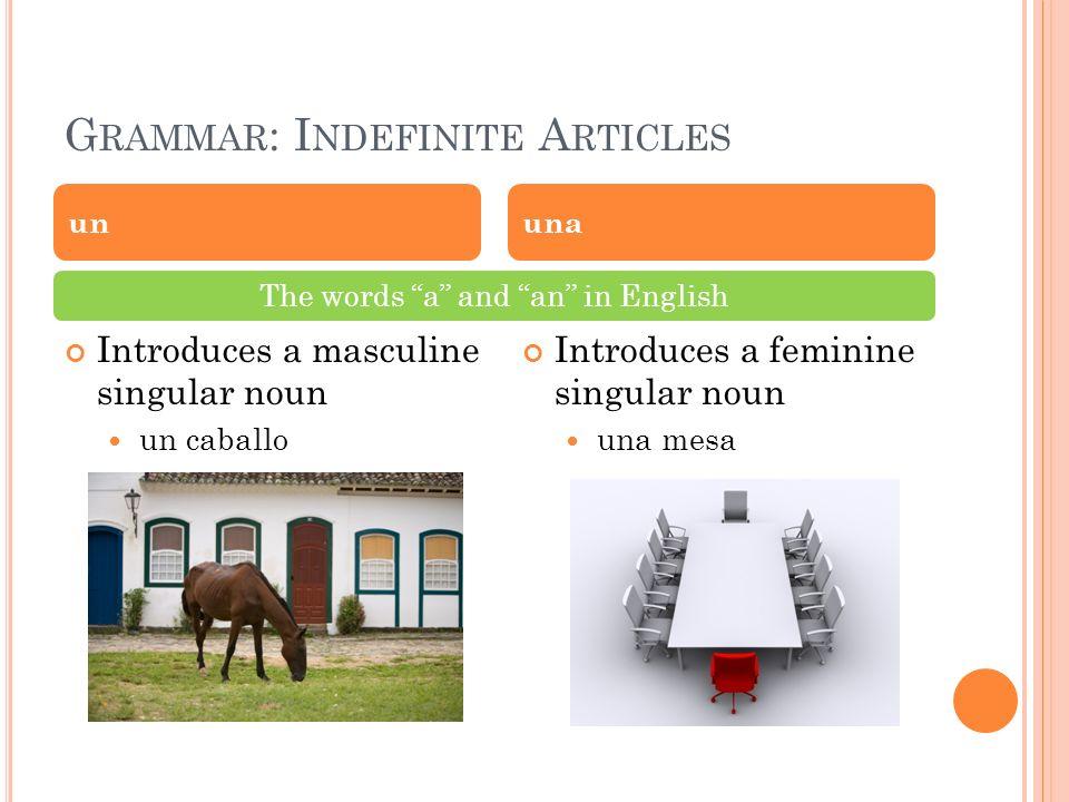 G RAMMAR : I NDEFINITE A RTICLES Introduces a masculine singular noun un caballo Introduces a feminine singular noun una mesa ununa The words a and an