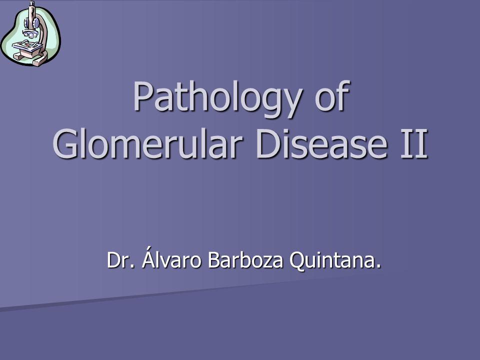 Pathology of Glomerular Disease II Dr. Álvaro Barboza Quintana.