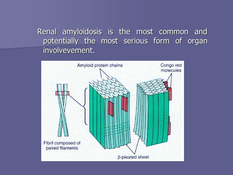 Renal amyloidosis is the most common and potentially the most serious form of organ involvevement.