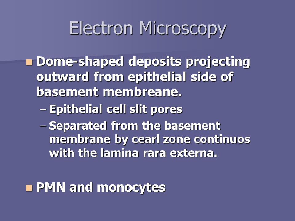 Electron Microscopy Dome-shaped deposits projecting outward from epithelial side of basement membreane. Dome-shaped deposits projecting outward from e