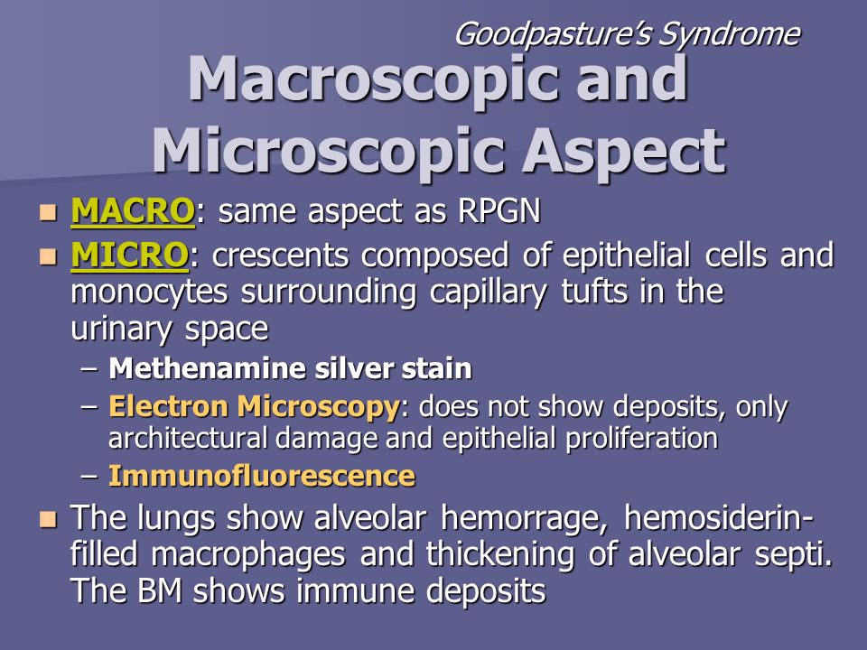 MACRO: same aspect as RPGN MACRO: same aspect as RPGN MICRO: crescents composed of epithelial cells and monocytes surrounding capillary tufts in the u
