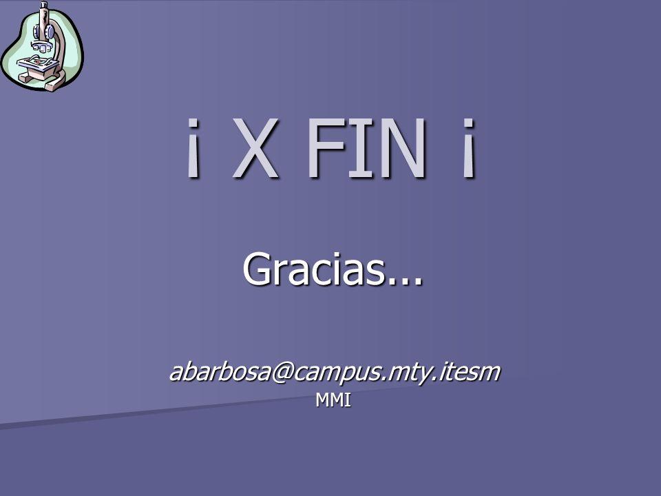 ¡ X FIN ¡ Gracias... abarbosa@campus.mty.itesm MMI