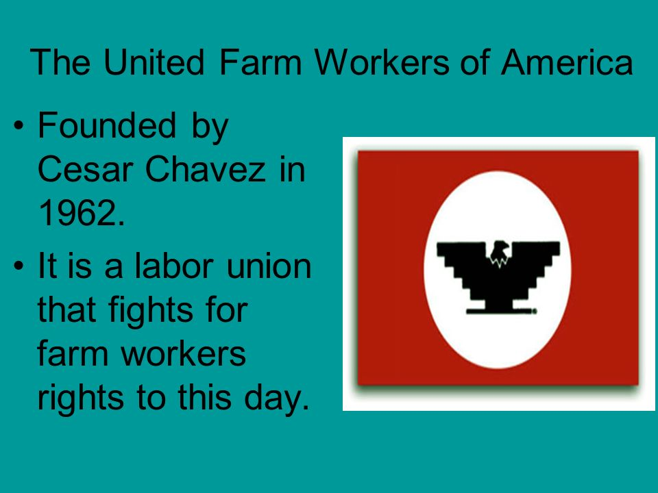 The United Farm Workers of America Founded by Cesar Chavez in 1962. It is a labor union that fights for farm workers rights to this day.