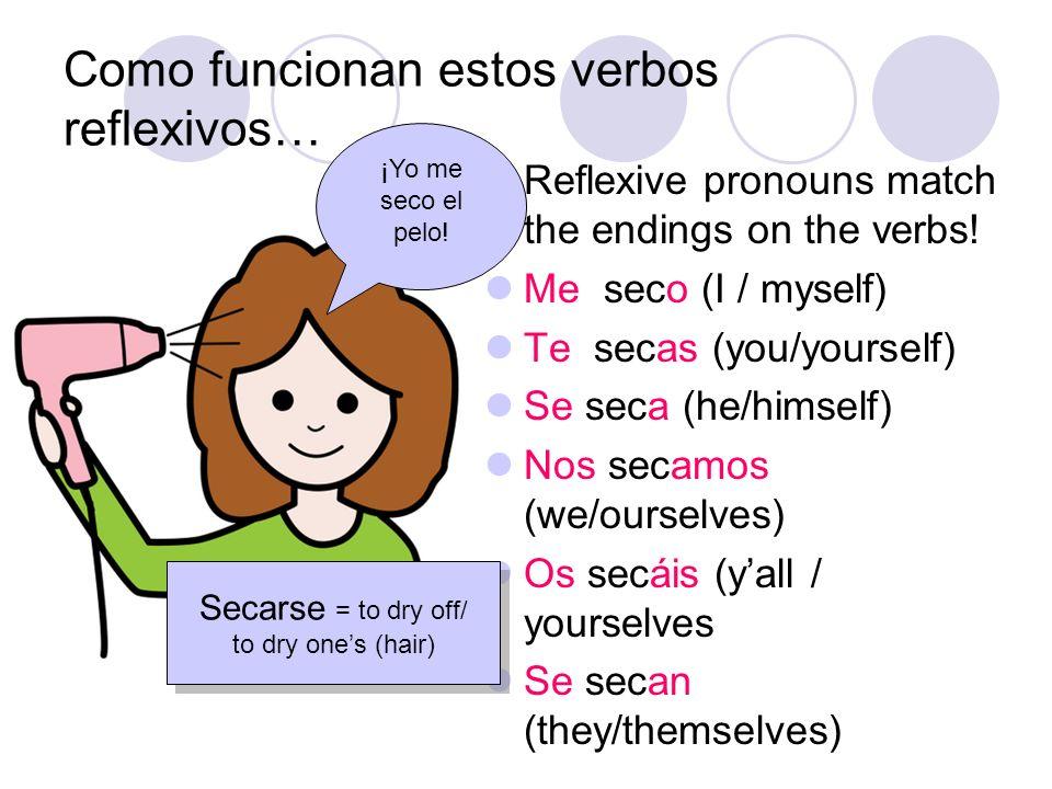 Como funcionan estos verbos reflexivos… Reflexive pronouns match the endings on the verbs! Me seco (I / myself) Te secas (you/yourself) Se seca (he/hi
