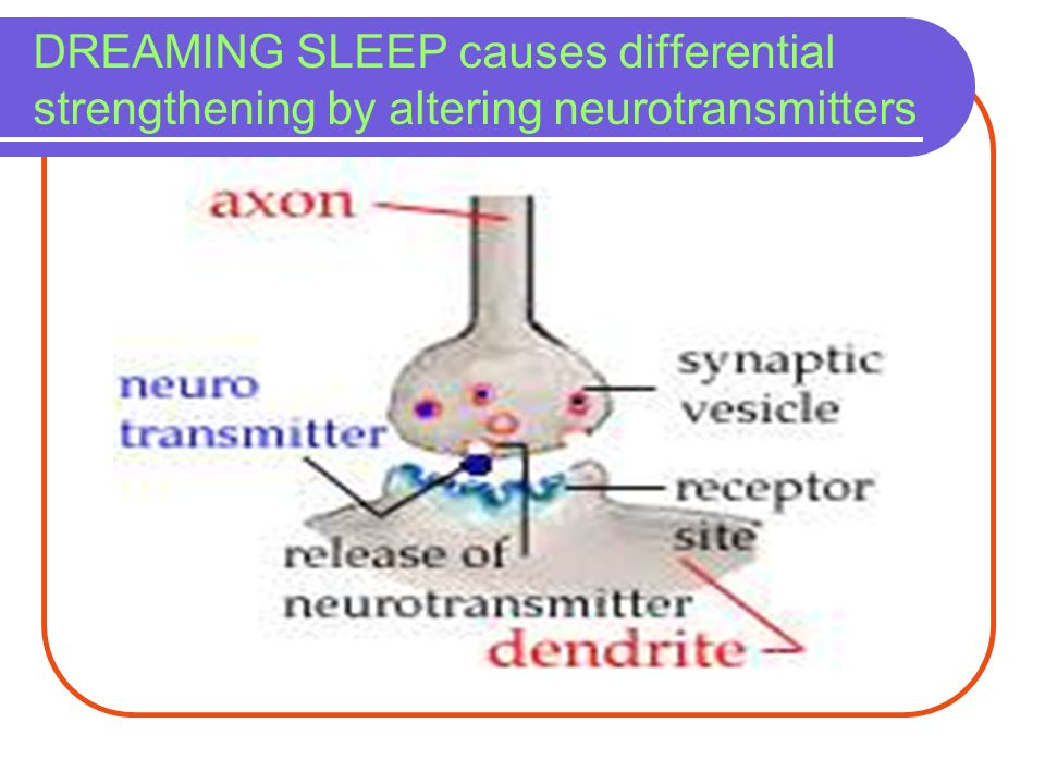 DREAMING SLEEP causes differential strengthening by altering neurotransmitters