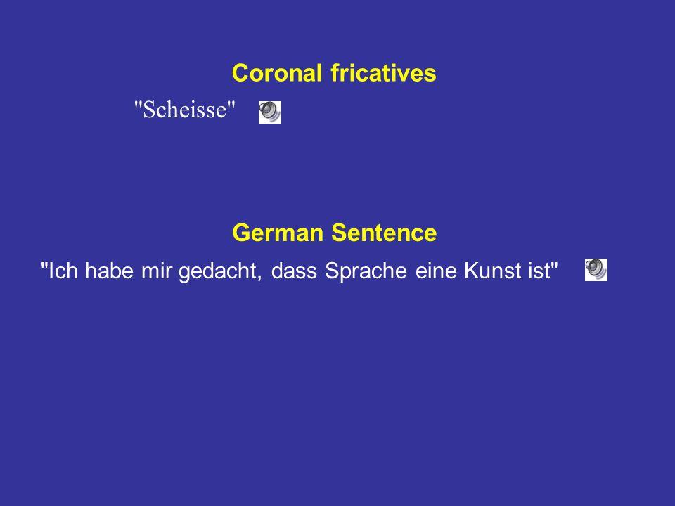 Scheisse Coronal fricatives German Sentence Ich habe mir gedacht, dass Sprache eine Kunst ist