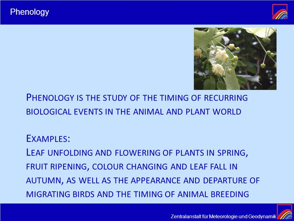 Zentralanstalt für Meteorologie und Geodynamik P HENOLOGY IS THE STUDY OF THE TIMING OF RECURRING BIOLOGICAL EVENTS IN THE ANIMAL AND PLANT WORLD E XA
