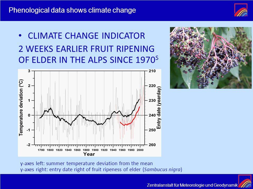 Zentralanstalt für Meteorologie und Geodynamik CLIMATE CHANGE INDICATOR 2 WEEKS EARLIER FRUIT RIPENING OF ELDER IN THE ALPS SINCE 1970 S y-axes left: