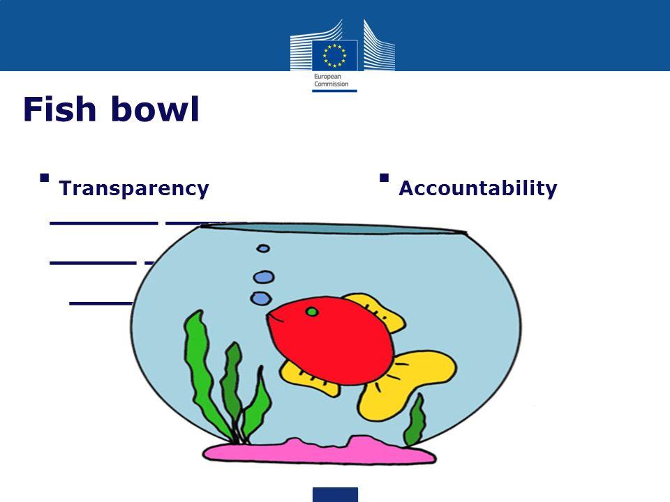 _____ _____ ____ _____ _____ _____ Fish bowl Accountability Transparency 16