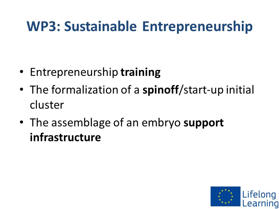 WP3: Sustainable Entrepreneurship Entrepreneurship training The formalization of a spinoff/start-up initial cluster The assemblage of an embryo suppor