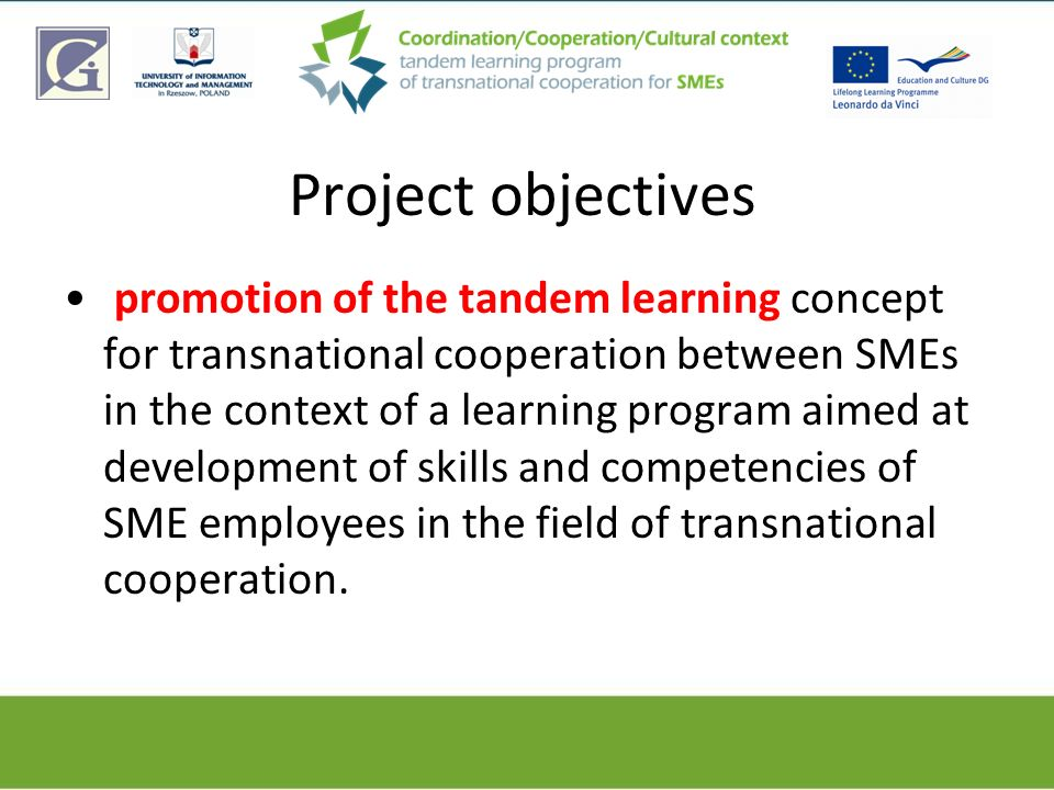 Project objectives promotion of the tandem learning concept for transnational cooperation between SMEs in the context of a learning program aimed at d