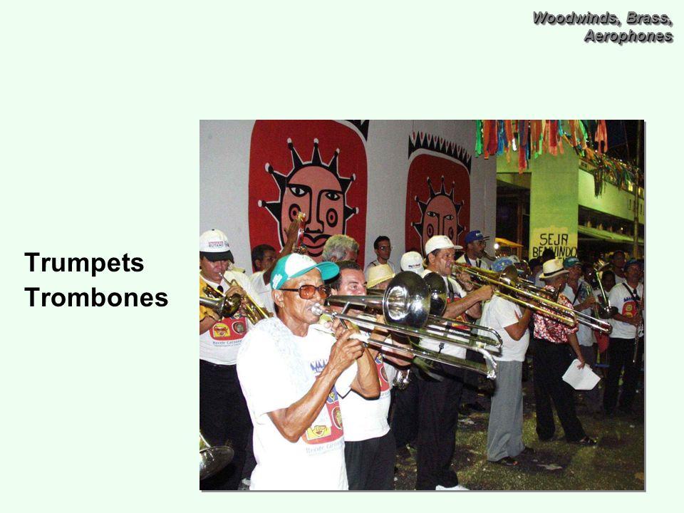 Woodwinds, Brass, Aerophones Trumpets Trombones