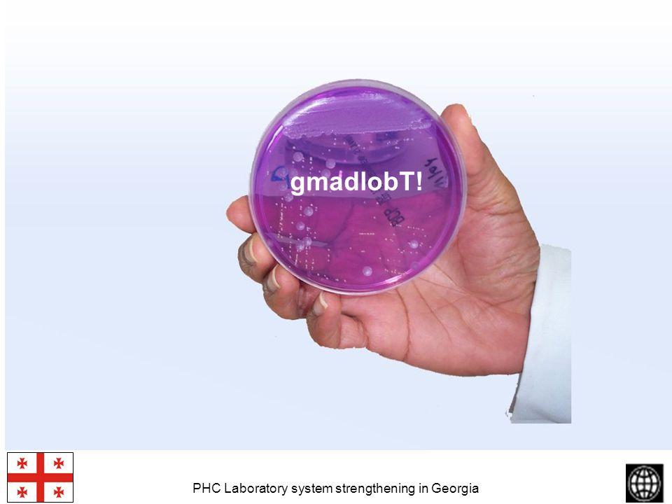 PHC Laboratory system strengthening in Georgia gmadlobT!