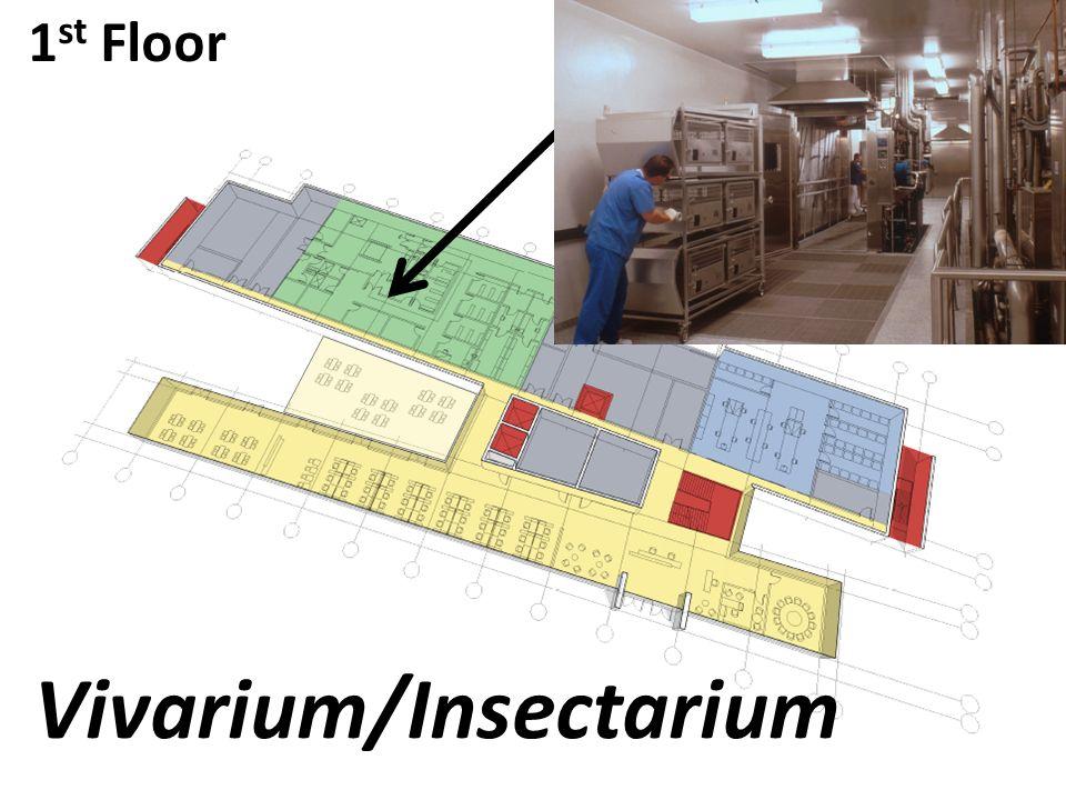 1 st Floor Vivarium/Insectarium