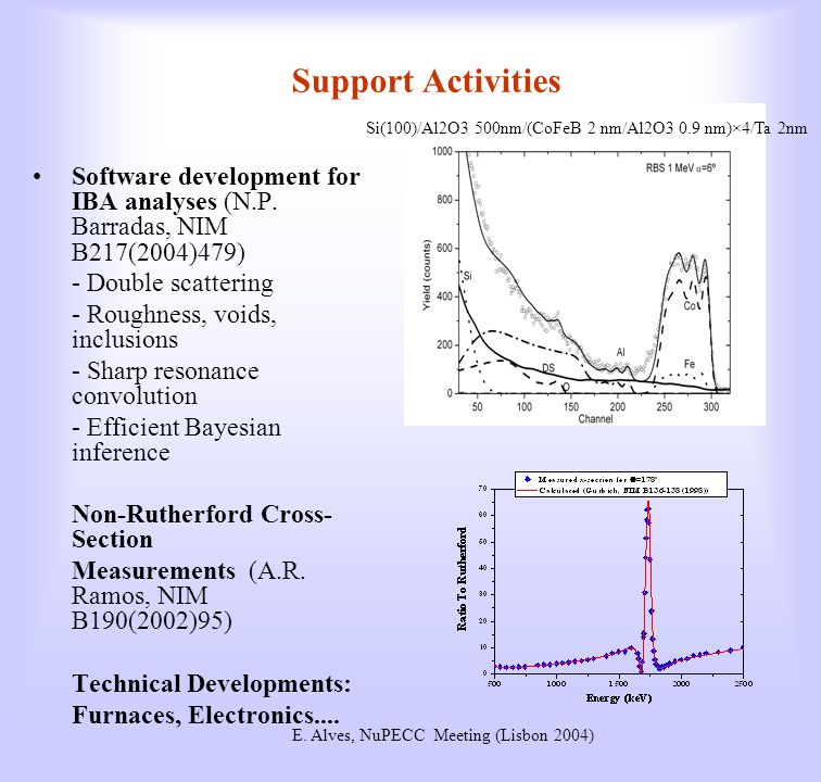 Support Activities Software development for IBA analyses (N.P.