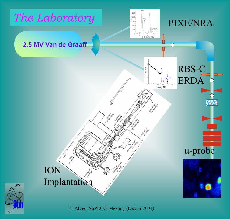 2.5 MV Van de Graaff PIXE/NRA RBS-C ERDA ION Implantation -probe The Laboratory E.