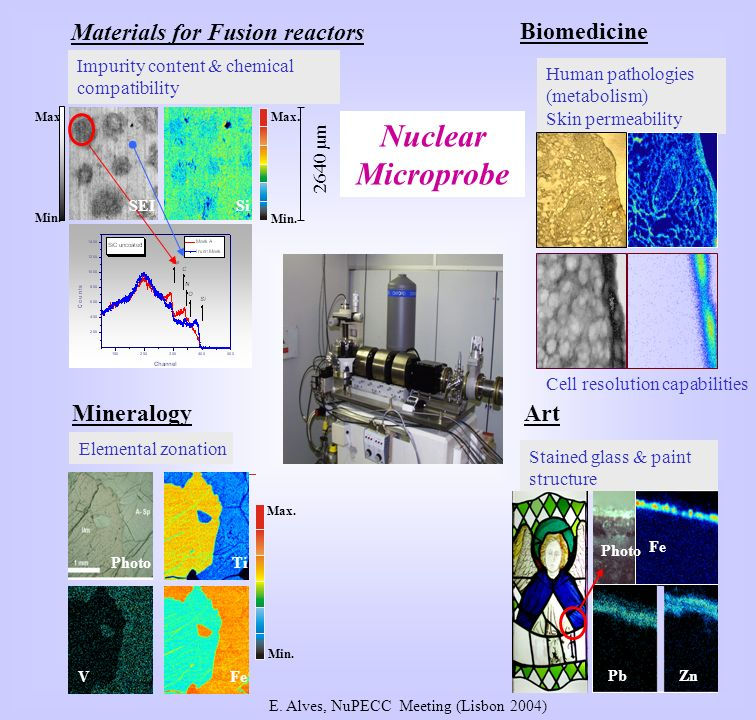 Max. Min. 2640 µm Max. Min. SiSEI Materials for Fusion reactors Art Nuclear Microprobe Human pathologies (metabolism) Skin permeability Impurity conte
