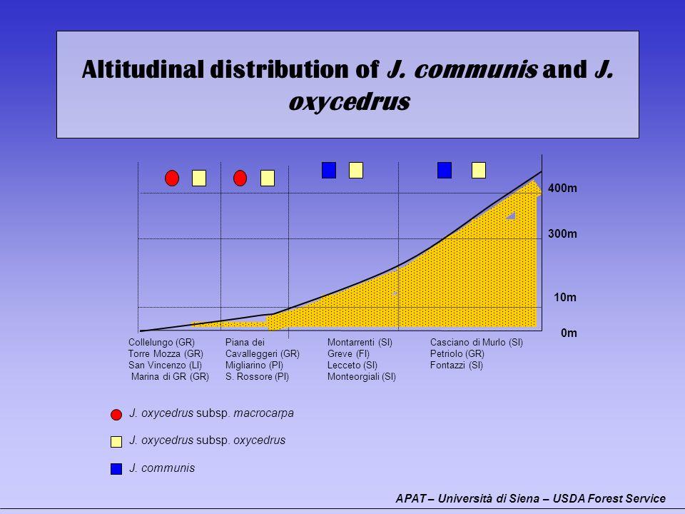 Altitudinal distribution of J. communis and J. oxycedrus J. oxycedrus subsp. macrocarpa J. oxycedrus subsp. oxycedrus J. communis Collelungo (GR) Torr