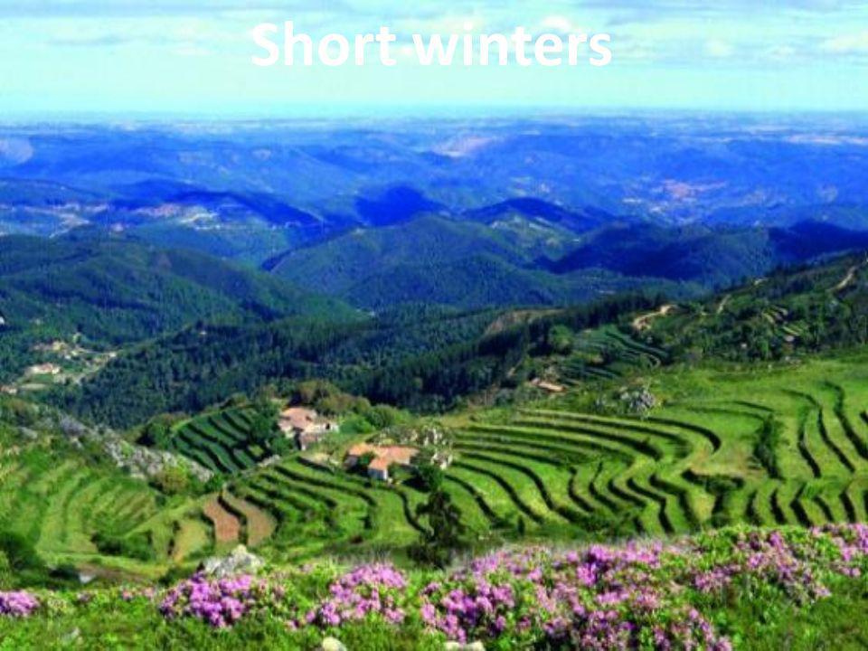 Short winters