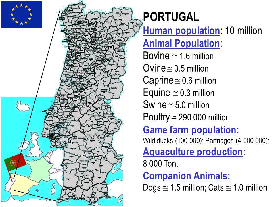 PORTUGAL Human population : 10 million Animal Population : Bovine 1.6 million Ovine 3.5 million Caprine 0.6 million Equine 0.3 million Swine 5.0 milli