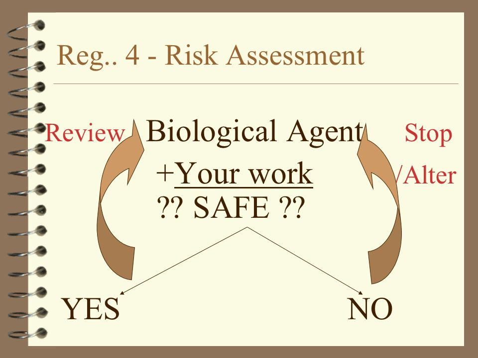 Reg.. 4 - Risk Assessment Review Biological Agent Stop +Your work /Alter ?? SAFE ?? YES NO