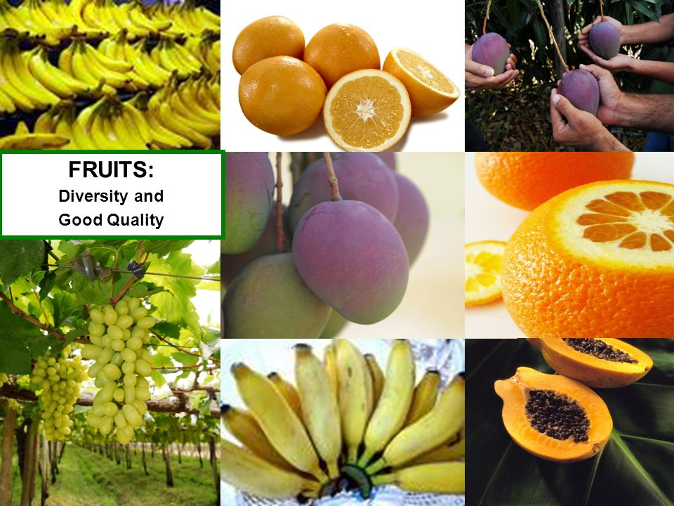 FRUITS: Diversity and Good Quality