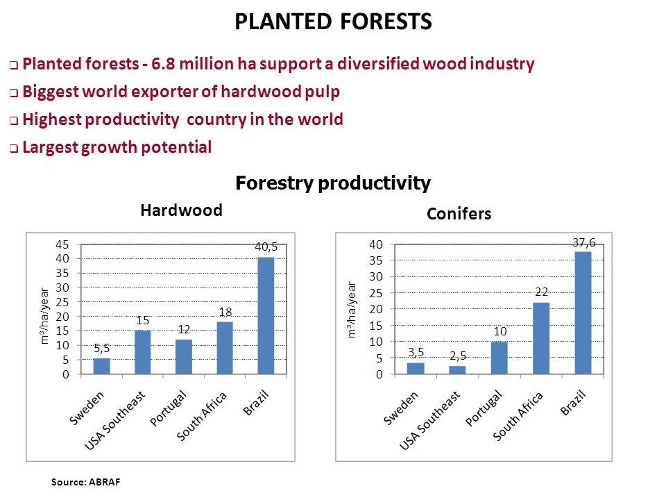 PLANTED FORESTS (Million ha) Hardwood Conifers Source: ABRAF Forestry productivity Planted forests - 6.8 million ha support a diversified wood industr