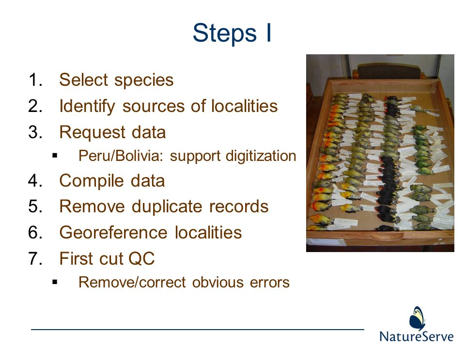 Steps I 1.Select species 2.Identify sources of localities 3.Request data Peru/Bolivia: support digitization 4.Compile data 5.Remove duplicate records