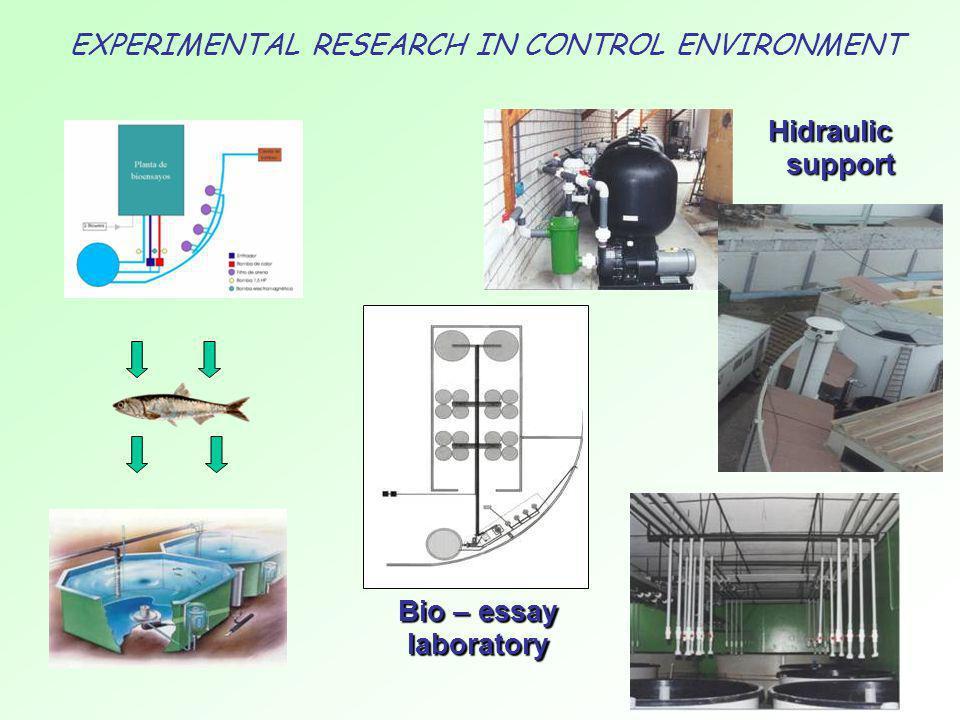 Hidraulic support Bio – essay laboratory EXPERIMENTAL RESEARCH IN CONTROL ENVIRONMENT