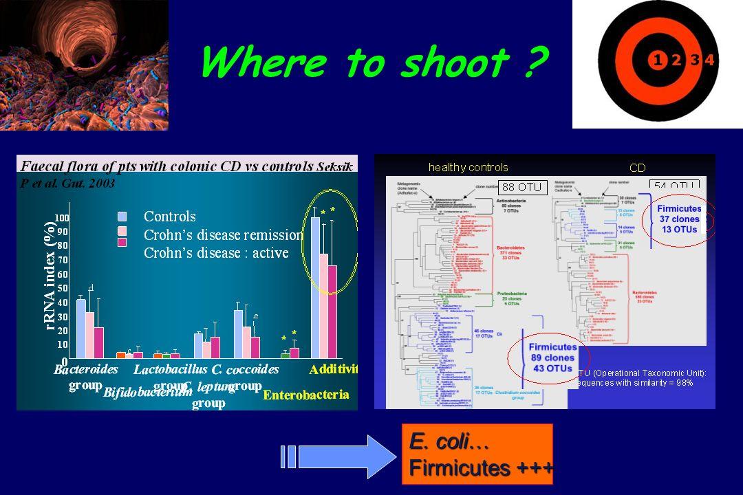 Where to shoot ? E. coli… Firmicutes +++