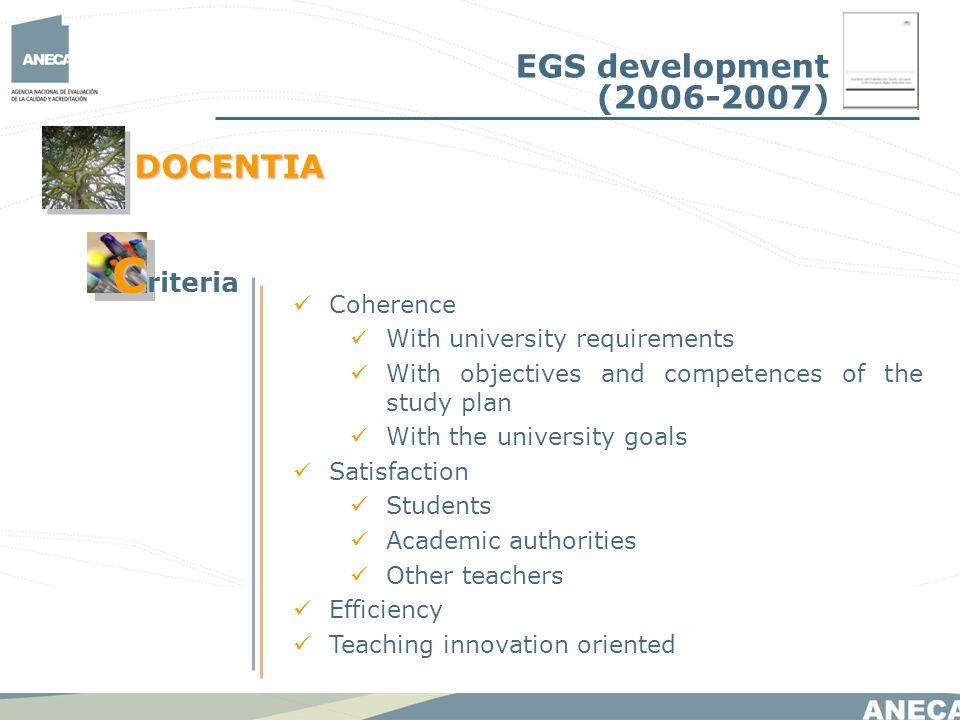 Coherence With university requirements With objectives and competences of the study plan With the university goals Satisfaction Students Academic authorities Other teachers Efficiency Teaching innovation oriented EGS development (2006-2007) DOCENTIA C C riteria