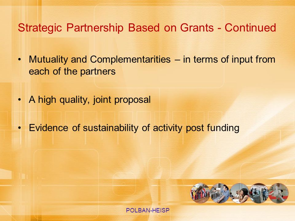 Strategic Partnership Based on Grants - Continued Mutuality and Complementarities – in terms of input from each of the partners A high quality, joint