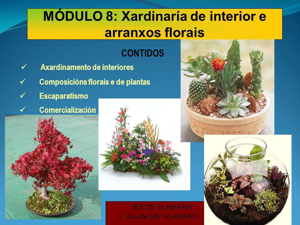 IES DE VILAMARÍN Borulfe S/N VILAMARÍN Axardinamento de interiores CONTIDOS Composicións florais e de plantas Escaparatismo Comercialización MÓDULO 8: Xardinaría de interior e arranxos florais