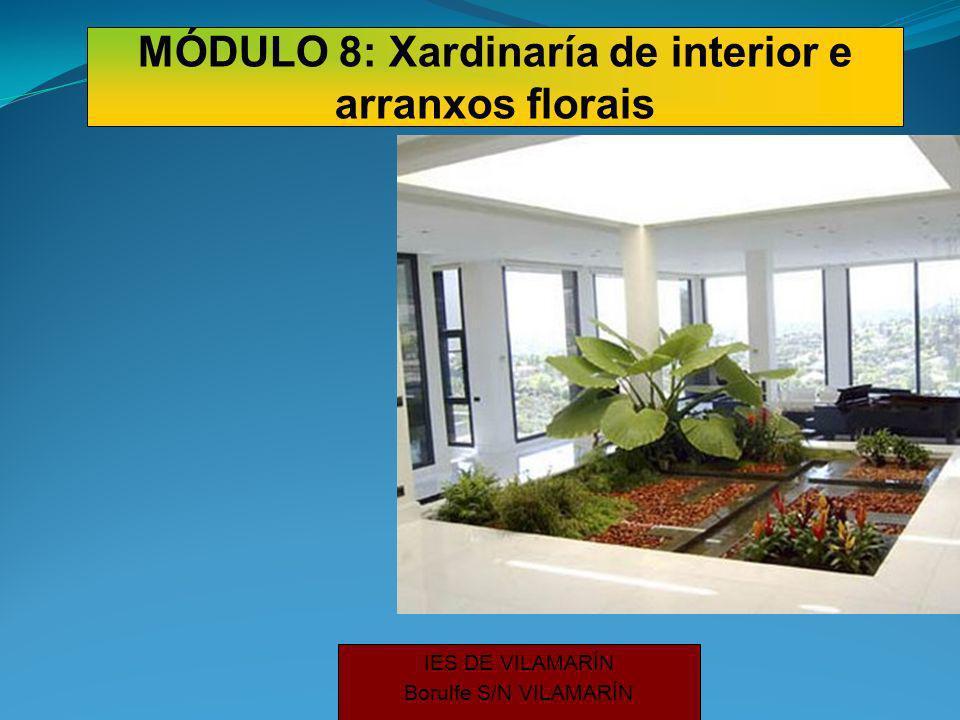 IES DE VILAMARÍN Borulfe S/N VILAMARÍN MÓDULO 8: Xardinaría de interior e arranxos florais