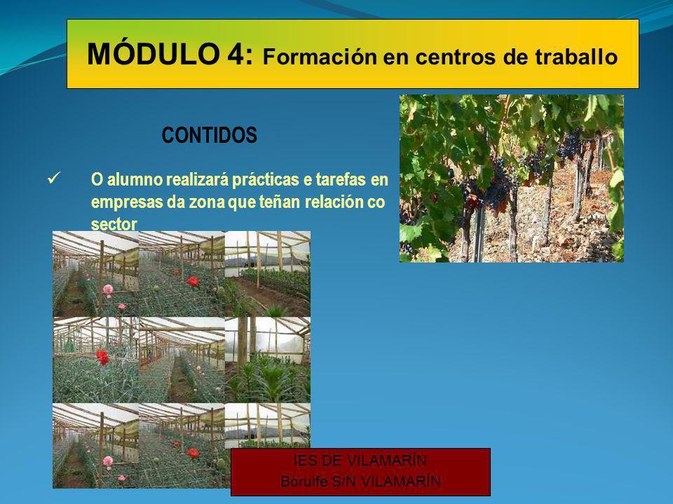 CONTIDOS O alumno realizará prácticas e tarefas en empresas da zona que teñan relación co sector MÓDULO 4: Formación en centros de traballo IES DE VILAMARÍN Borulfe S/N VILAMARÍN