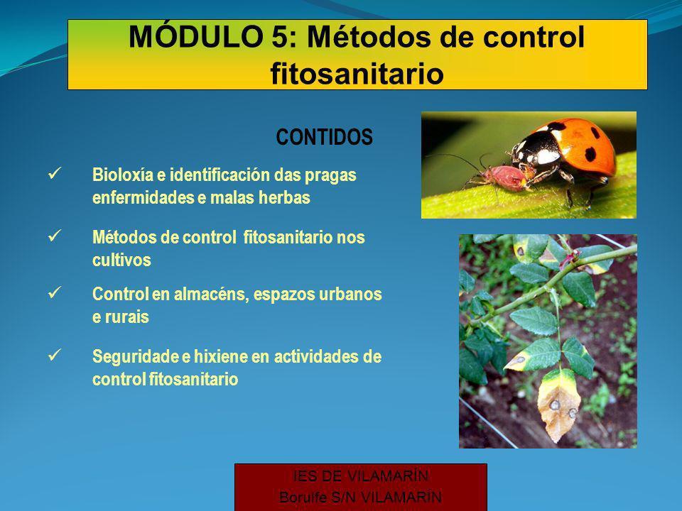 IES DE VILAMARÍN Borulfe S/N VILAMARÍN Bioloxía e identificación das pragas enfermidades e malas herbas Métodos de control fitosanitario nos cultivos CONTIDOS Control en almacéns, espazos urbanos e rurais Seguridade e hixiene en actividades de control fitosanitario MÓDULO 5: Métodos de control fitosanitario