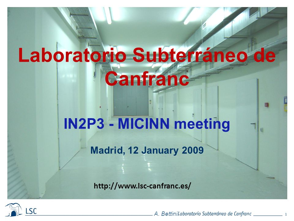 1 A. Bettini. Laboratorio Subterráneo de Canfranc IN2P3 - MICINN meeting Madrid, 12 January 2009 http://www.lsc-canfranc.es/