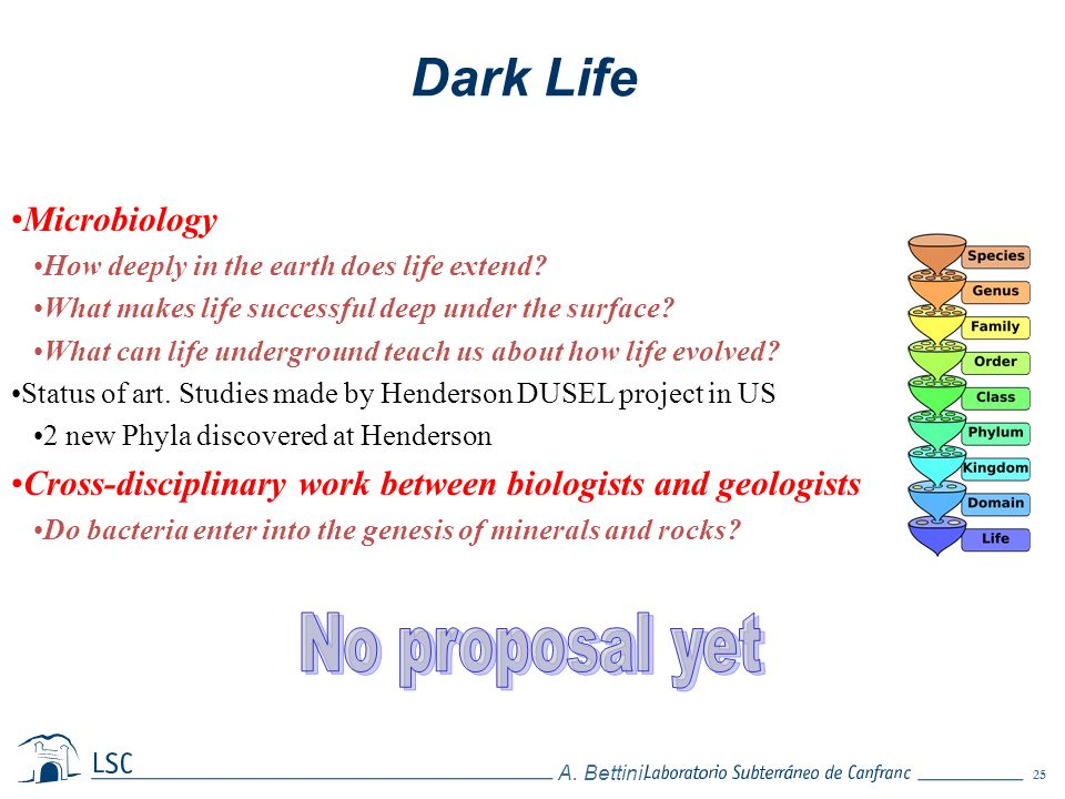 25 A. Bettini. Dark Life Microbiology How deeply in the earth does life extend? What makes life successful deep under the surface? What can life under
