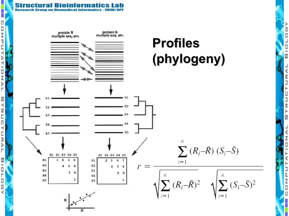Profiles (phylogeny)
