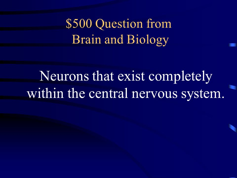 $400 Answer from Brain and Biology What is epilepsy?