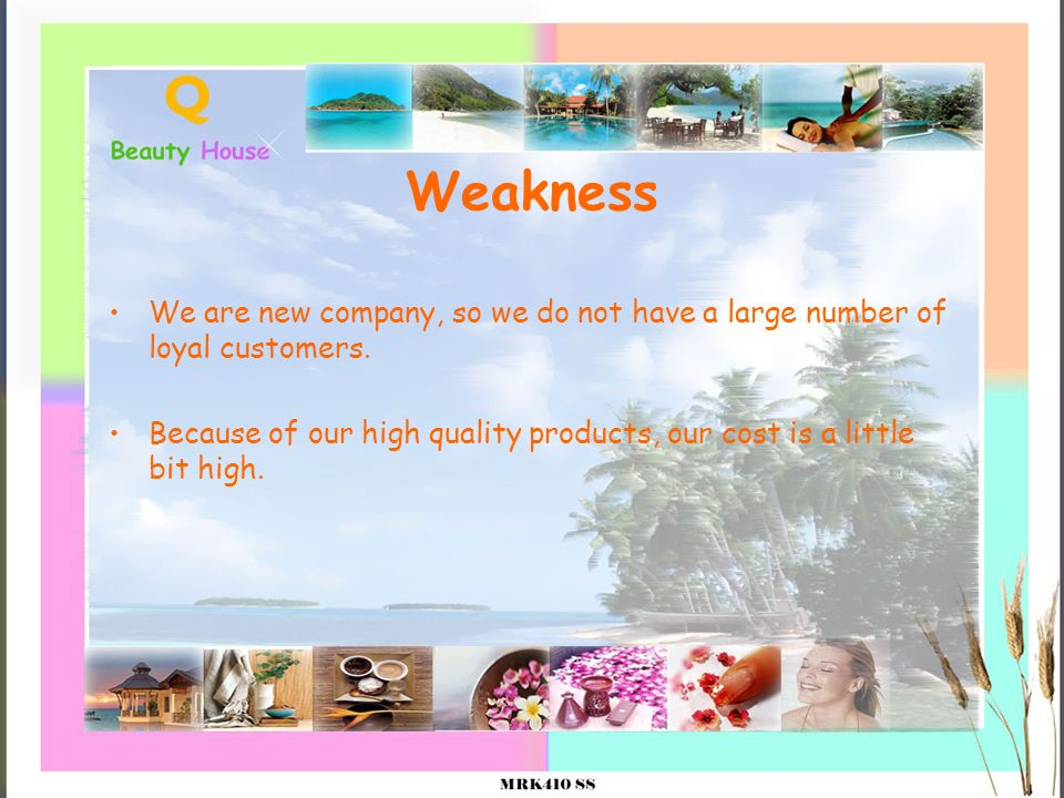 Weakness We are new company, so we do not have a large number of loyal customers. Because of our high quality products, our cost is a little bit high.