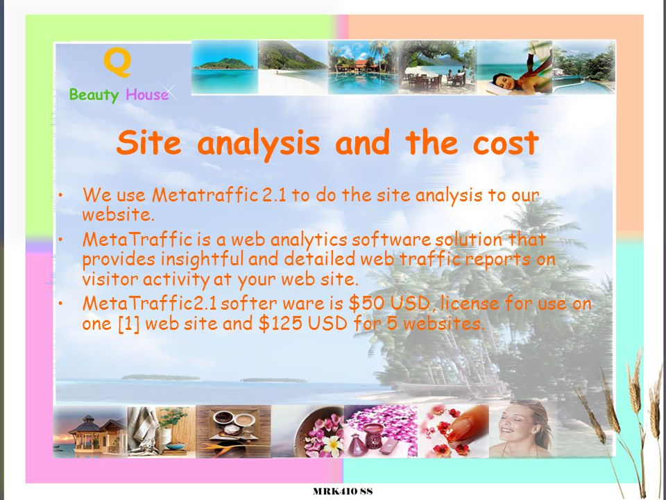 Site analysis and the cost We use Metatraffic 2.1 to do the site analysis to our website. MetaTraffic is a web analytics software solution that provid