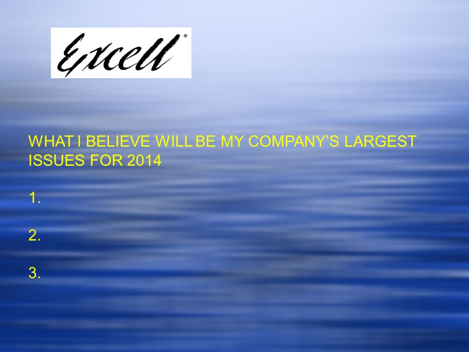 WHAT I BELIEVE WILL BE MY COMPANYS LARGEST ISSUES FOR 2014 1. 2. 3.