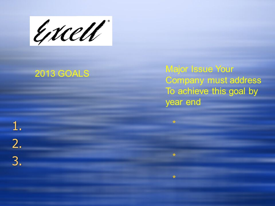 1. 2. 3. 1. 2. 3. 2013 GOALS Major Issue Your Company must address To achieve this goal by year end ******