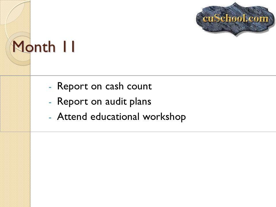 Month 11 - Report on cash count - Report on audit plans - Attend educational workshop
