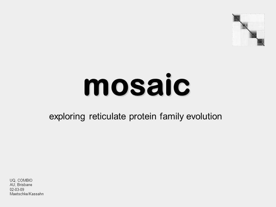 mosaic exploring reticulate protein family evolution UQ, COMBIO AU, Brisbane 02-03-09 Maetschke/Kassahn