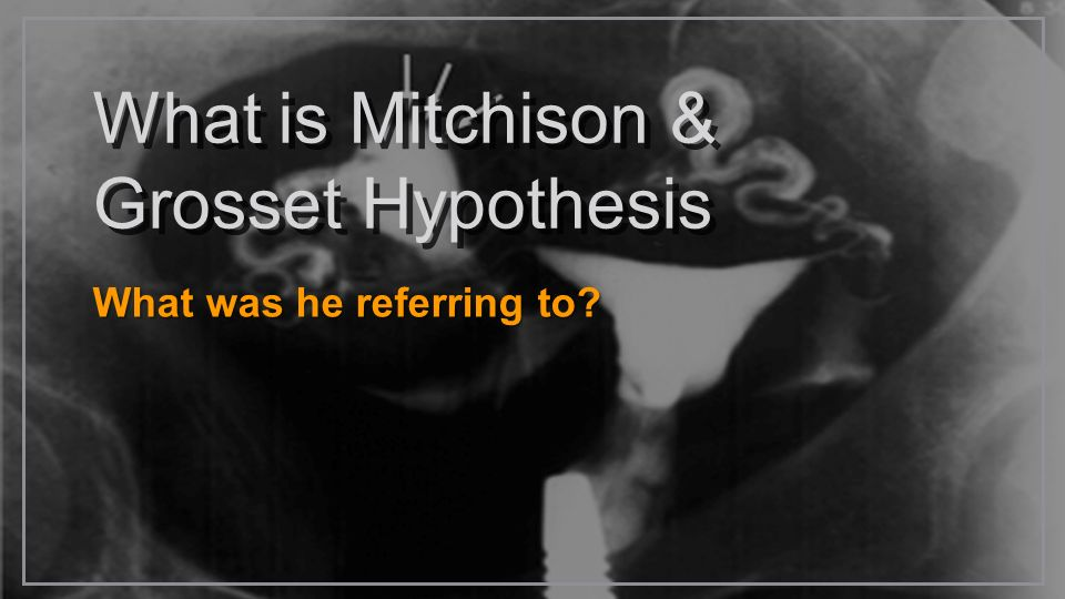 What is Mitchison & Grosset Hypothesis What was he referring to?
