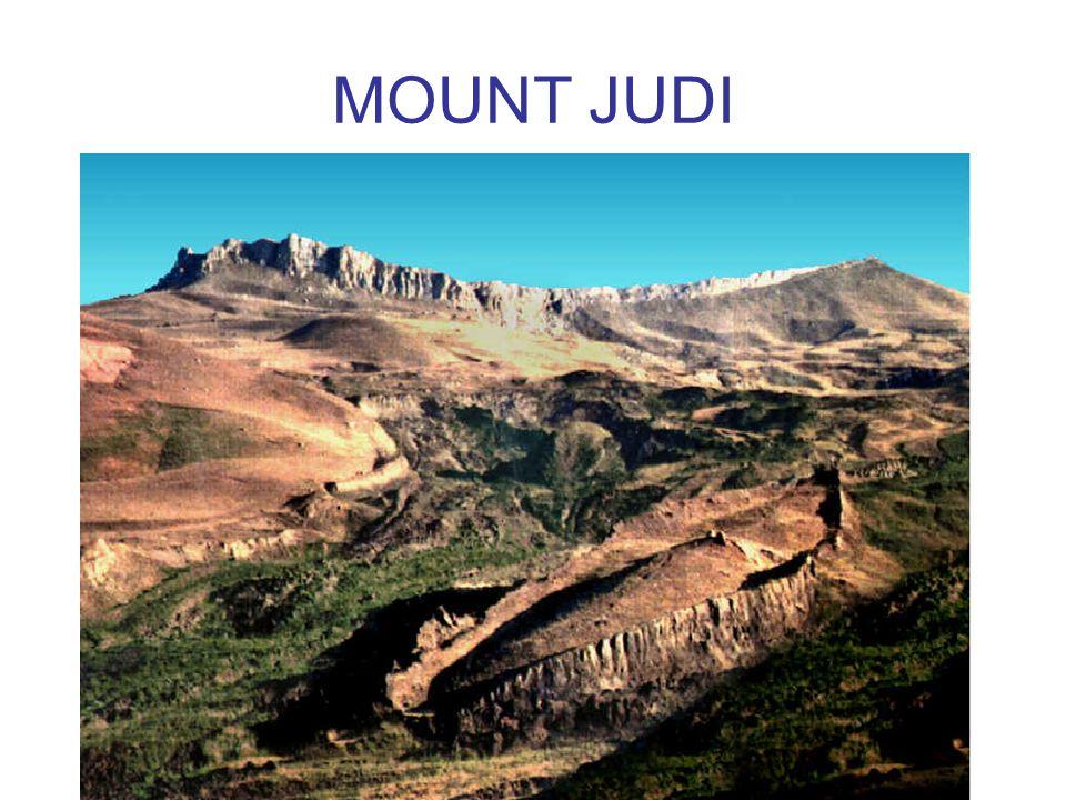 MOUNT JUDI